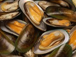 green lipped mussel extract powder