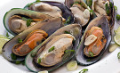 green-lip-mussels-extract2